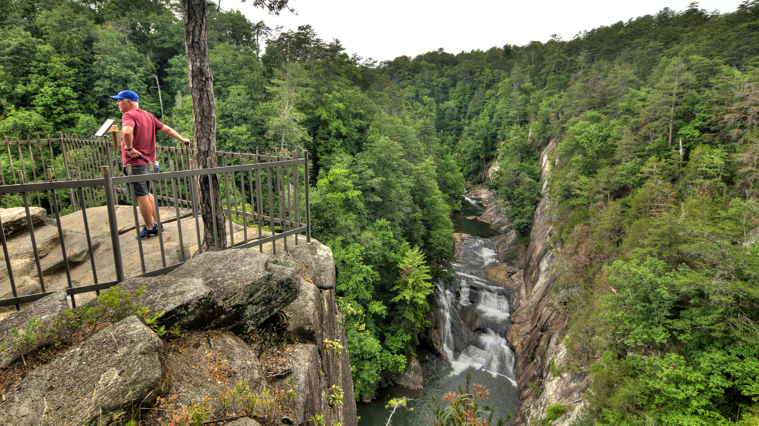View from the North Rim Overlook into the gorge at Tallulah Gorge State Park in Tallulah Falls, GA on Monday, June 12, 2017. Copyright 2017 Jason Barnette