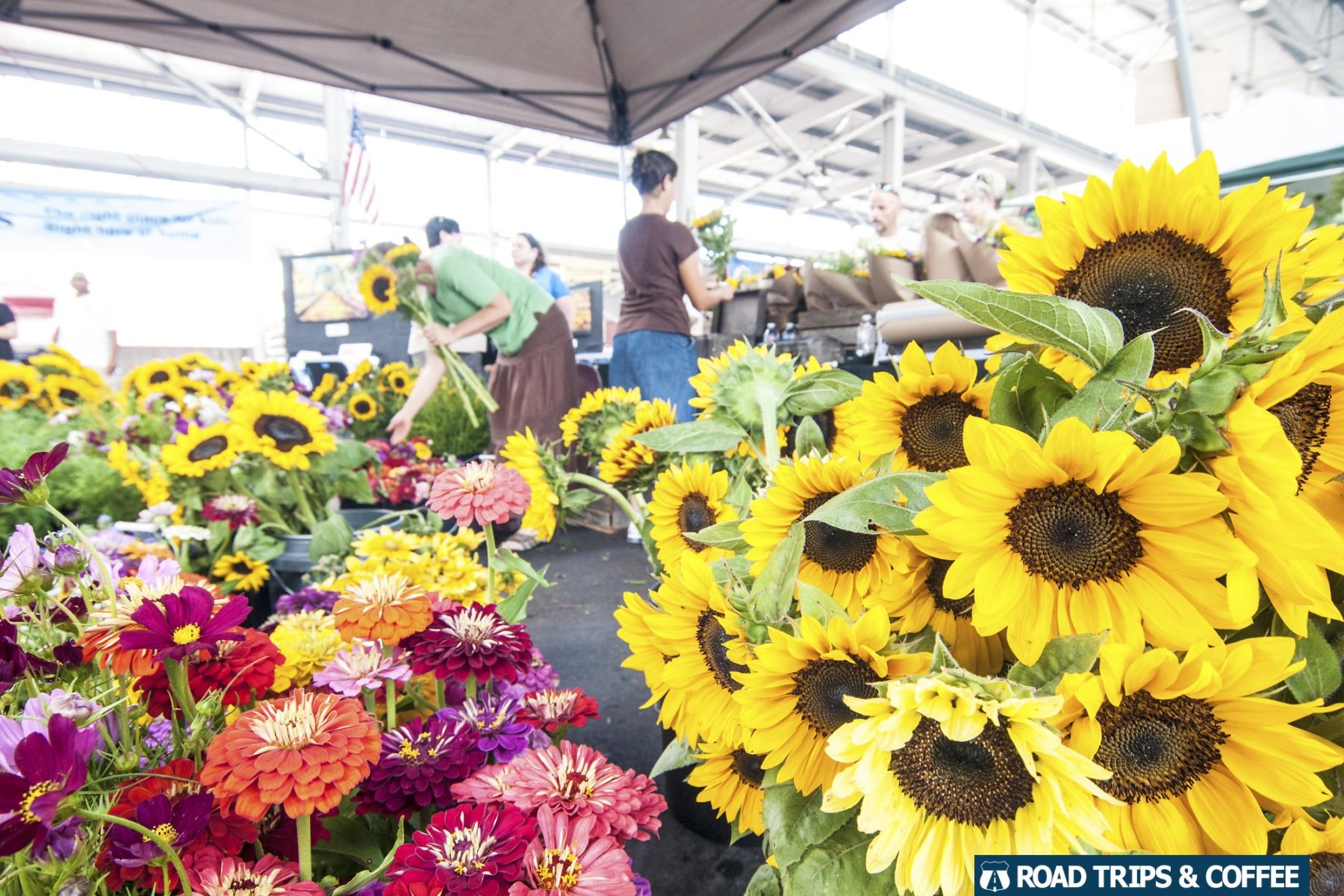 Colorful flowers for sale at the Chattanooga Market in Chattanooga, Tennessee