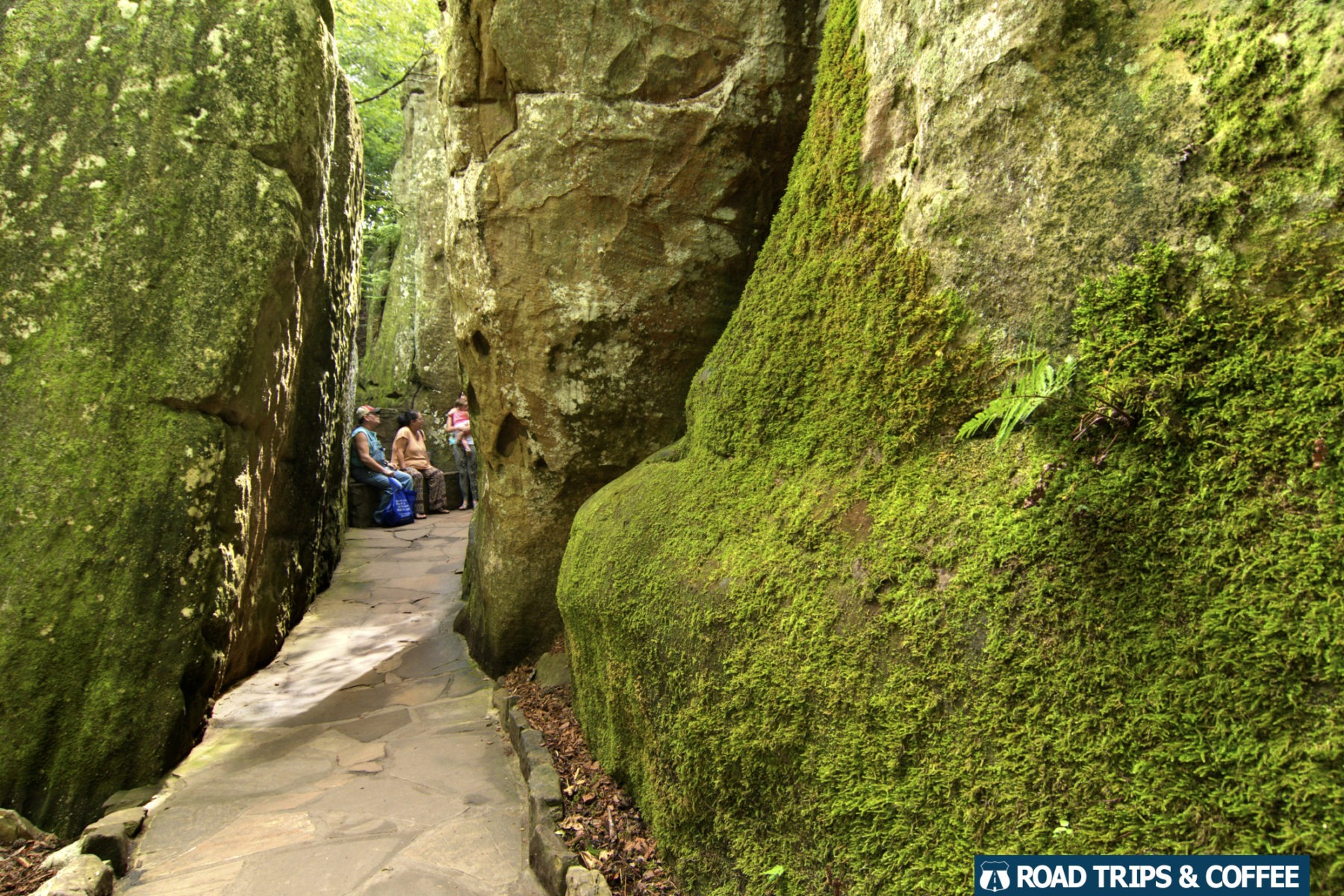Moss covered rocky walls with a narrow path through the middle at Rock City in Lookout Mountain, Tennessee