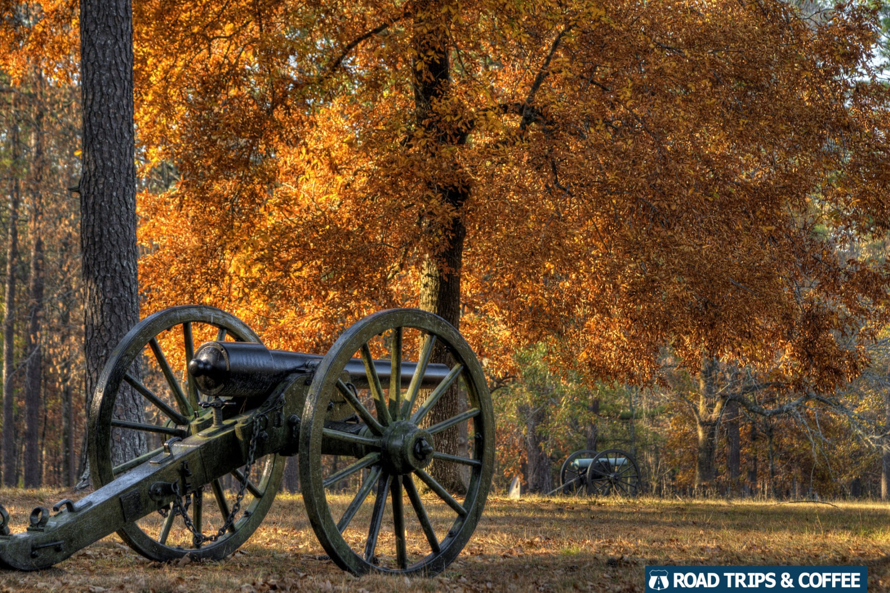 Bright orange fall colors in a tree behind a canon on display at Chickamauga & Chattanooga National Military Park in Fort Oglethorpe, Georgia