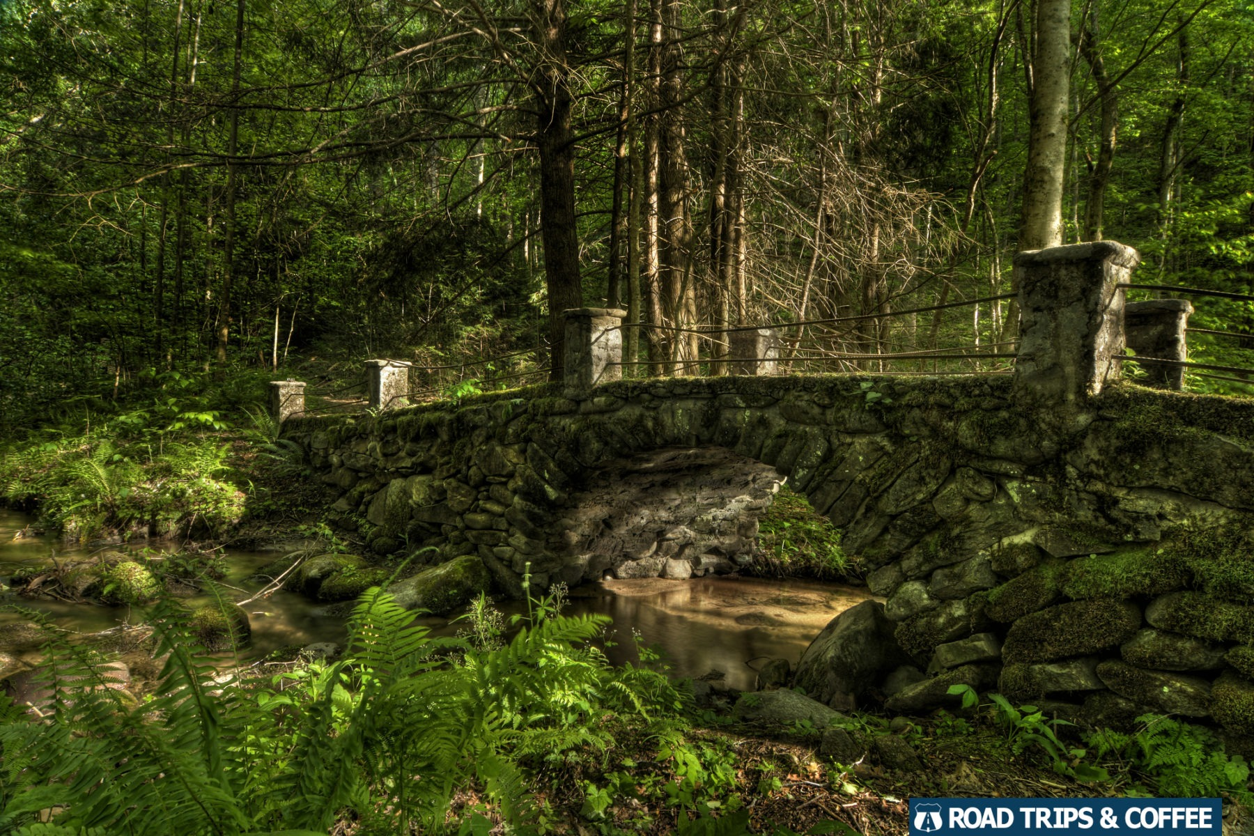 A hidden stone bridge surrounded by a forest crosses a creek near Elkmont in the Great Smoky Mountains National Park