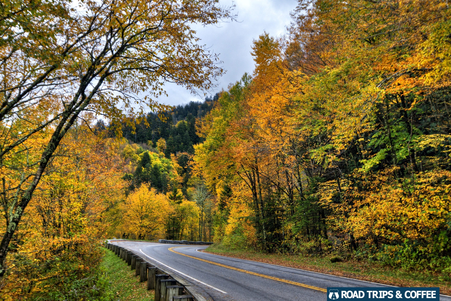 Vibrant fall colors along Newfound Gap Road in the Great Smoky Mountains National Park