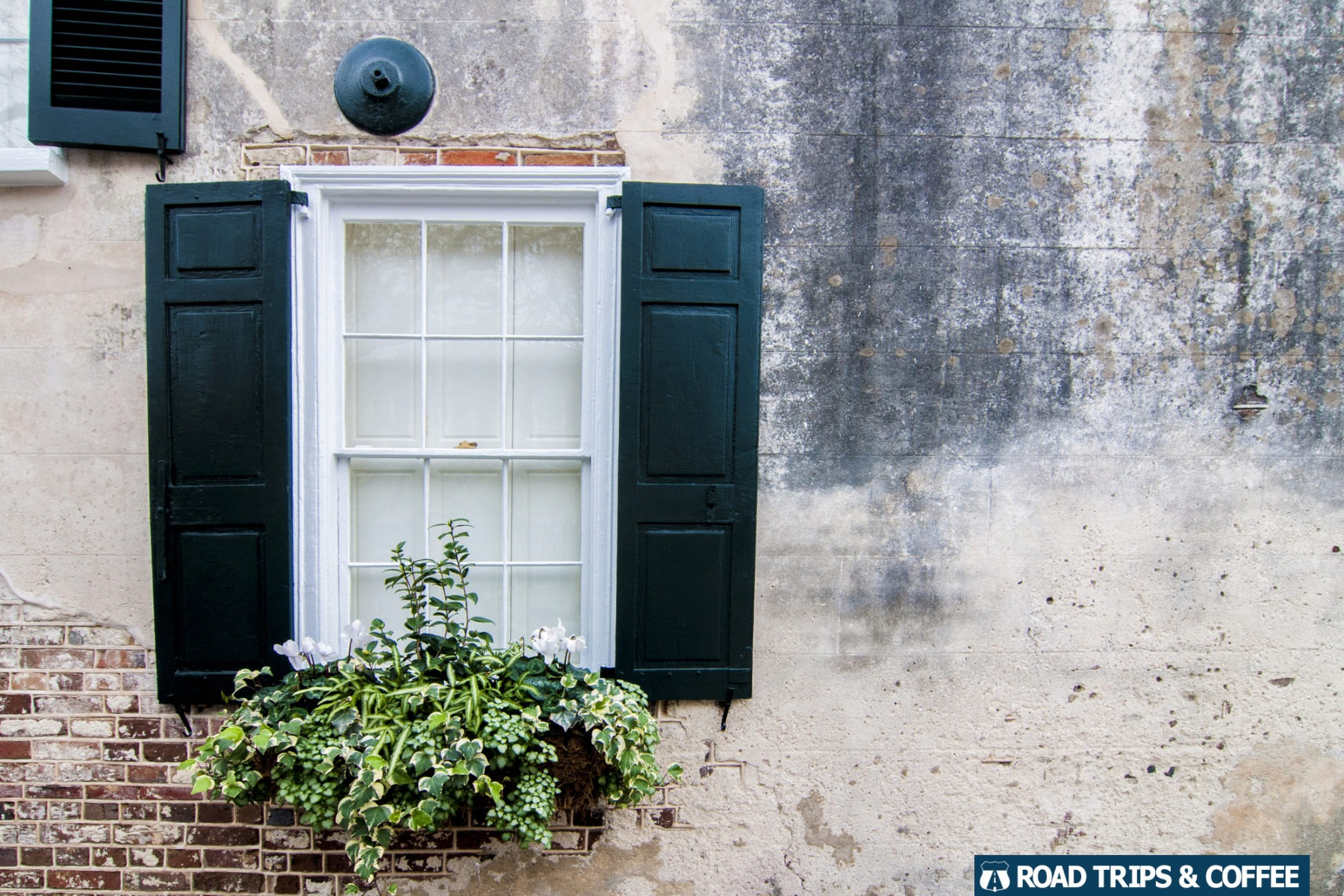 A flower box in front of a window at a home in Charleston, South Carolina