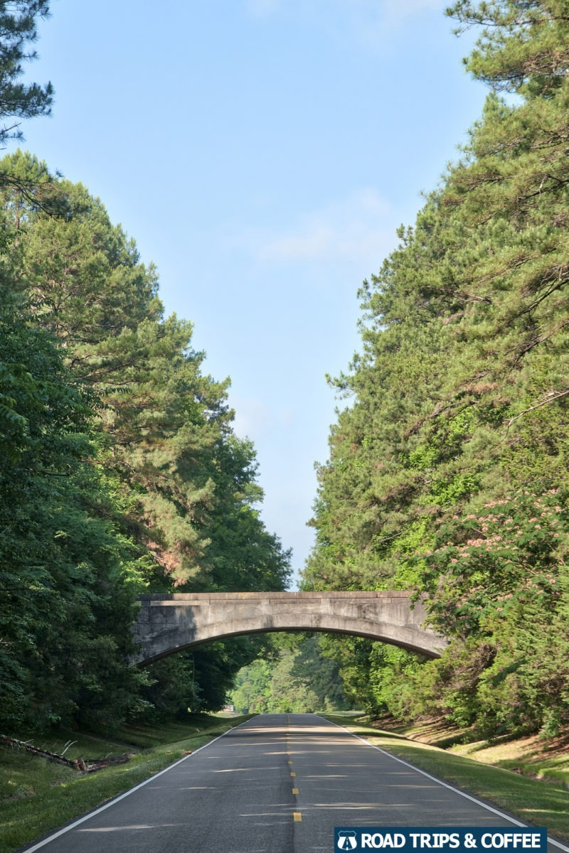 A beautiful bridge crosses a section of the parkway surrounded by trees on the Natchez Trace Parkway in Mississippi