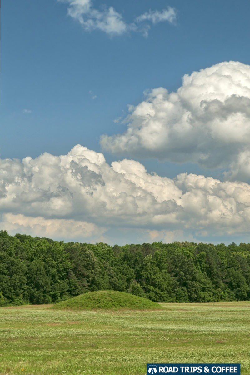 One of the mounds at Pharr Mounds on the Natchez Trace Parkway in Mississippi