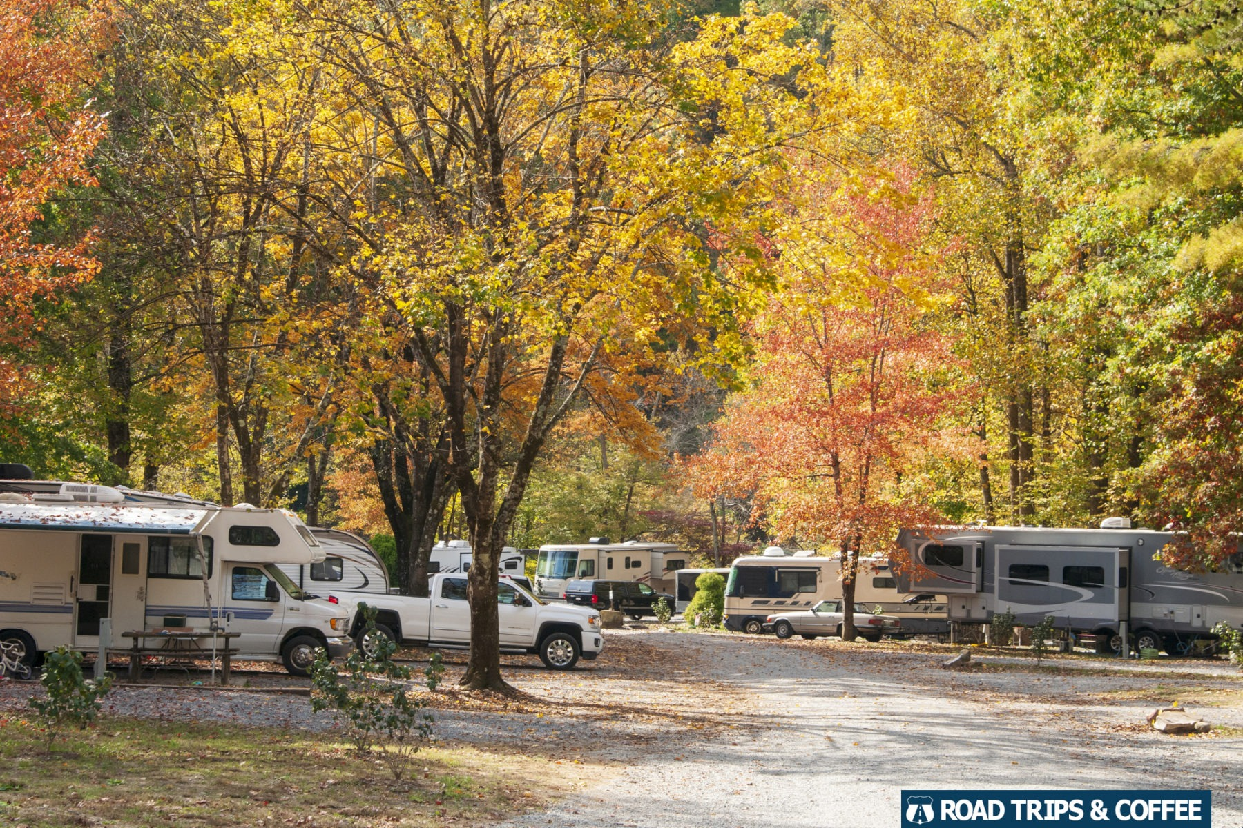 A full campground of campers and RVs surrounded by gorgeous fall colors in massive trees at the Little Arrow Outdoor Resort in Townsend, Tennessee