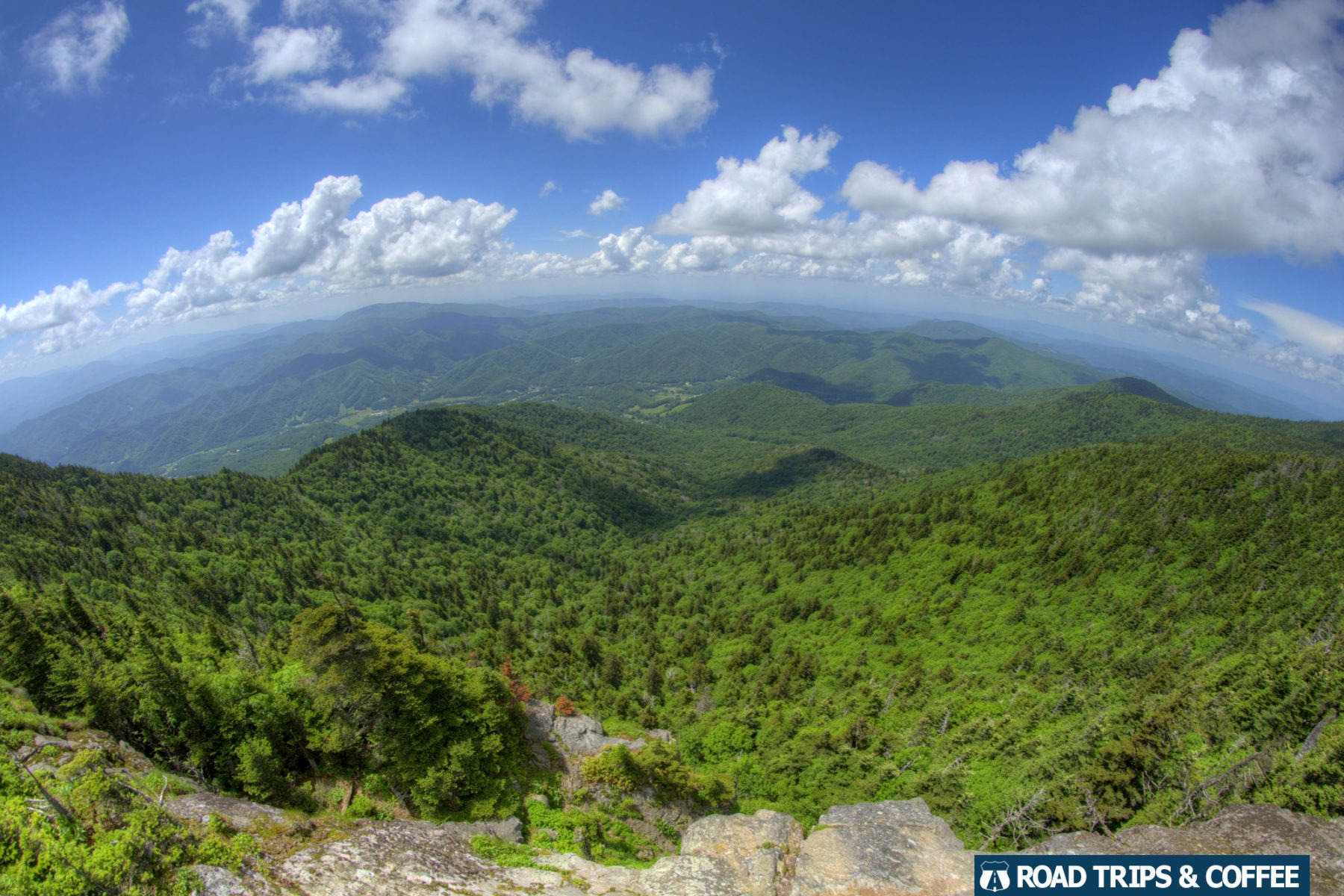 View of landscape from a sheer bluff at Roan High Bluff on Roan Mountain in Tennessee