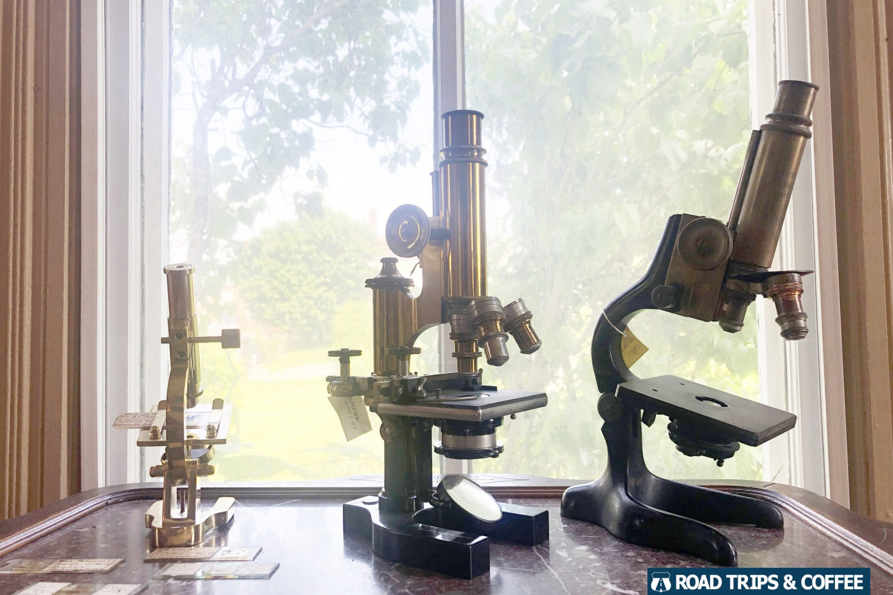 Collection of microscopes on display at the Haller-Gibboney Rock House Museum in Wytheville, Virginia