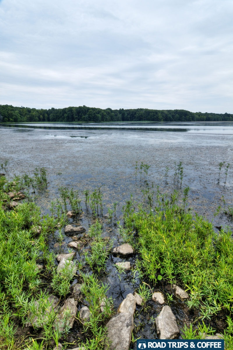 The calm waters of Hematite Lake at the Land Between the Lakes National Recreation Area