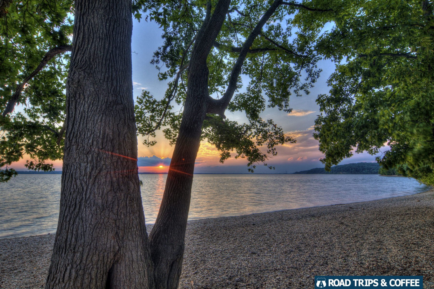 Warm sunset beyond a tree across the calm water of Kentucky Lake at the Moss Creek Day Use Area at Land Between the Lakes National Recreation Area
